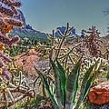 Arizona Bell Rock Valley N7 by John Straton