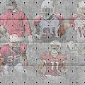 Arizona Cardinals Legends by Joe Hamilton