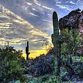 Arizona Desert  by Jon Berghoff