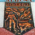 Arizona Ditat Deus by Lisa Byrne