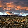 Arizona Landscape by Anthony Dezenzio