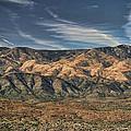 Arizona Lonesome by Carolyn Fletcher