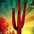Arizona by Michelle Dallocchio