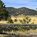Arizona Mountains by Lori Amway
