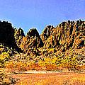 Arizona Panorama Organ Pipe by Bob and Nadine Johnston