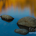 Arizona Reflection by John Shaw