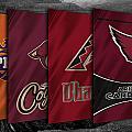 Arizona Sports Teams by Joe Hamilton