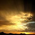 Arizona Sunset by Kerri Mortenson