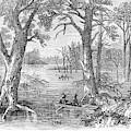 Arkansas Sunken Lands by Granger