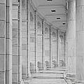 Arlington Amphiteather Arches And Columns by Susan Candelario