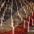 Arlington Cemetery With Faded Flag by Lane Erickson