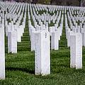 Arlington National Cemeterey by Susan Candelario