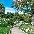 Arlington National Cemetery Part 2 by Alex Hiemstra