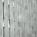 Army Of Pillars by Valentino Visentini