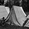 Army Tents Circa 1800s by David Lee Thompson
