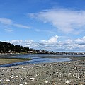 Arness Park Beach by Vicki Maheu