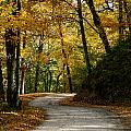 Around The Bend by Susan Herber