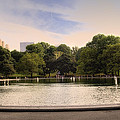 Around The Central Park Pond by Madeline Ellis