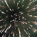 Around The Fourth Fireworks II by Daniel Henning
