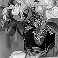 Arrangement In Black And White  by Susan McMenamin