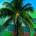 Art Deco Boulevard Hotel Miami by Rebecca Korpita