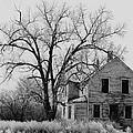Art Homage Andrew Wyeth Abandoned 1930's Farm House Near Aberdeen South Dakota 1965-2012 by David Lee Guss