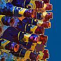 Art Of Bottles by Jost Houk