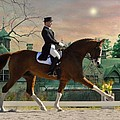 Art Of Dressage by Fran J Scott