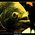 Art Work 132 Piranha by Alexander Drum
