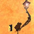 Artful Street Lamp by Susan Rovira