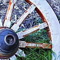 Artful Wagon Wheel by Marilyn Hunt
