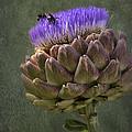 Artichoke Bloom And Bee Dip by Belinda Greb