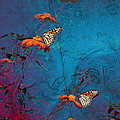 Artistic Butterflies by Sari Sauls