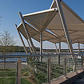 Artistic Canopy by DLL Production Co