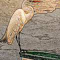 Artistic Egret And Boat by Don Johnson