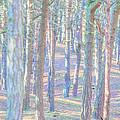 Artistic Trees by Susan Leonard