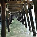 Long Walk Short Pier by Charlotte Stevenson