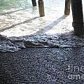 Under The Boardwalk by Charlotte Stevenson