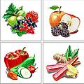 Artz Vitamins Colorful Mix by Irina Sztukowski