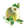 Artz Vitamins Series A Happy Green Apple by Irina Sztukowski