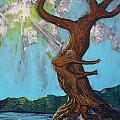Ascension by Stefan Duncan