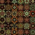 Asclepiads 6x8 by Ann Stretton
