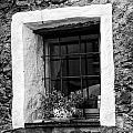 Ascona Window Bw by Timothy Hacker