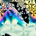 Ascorbic Acid Crystals In Polarized Light by Stephan Pietzko