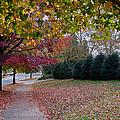 Asheville In The Fall by Walt  Baker
