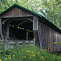 Ashtabula Collection - Riverdale Road Covered Bridge 7k02981 by Guy Whiteley