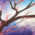 Asian Bloom Triptych 1 by Darren Robinson
