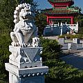 Asian Gardens by Claus Siebenhaar