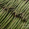 Asparagus by Kerstin Ivarsson