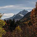 Aspen And Mountains 1 by Lee Kirchhevel
